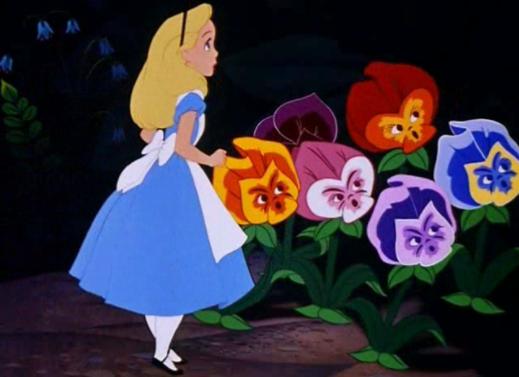Bien exclure ses mots-clés - Alice au pays des merveilles